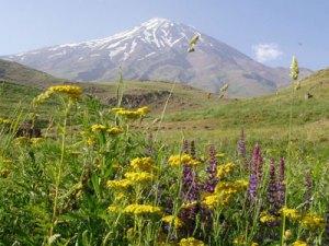 کوهپیمائی سبز ایرانیان